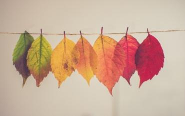Le parole dell'autunno