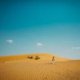 Il mostro del deserto